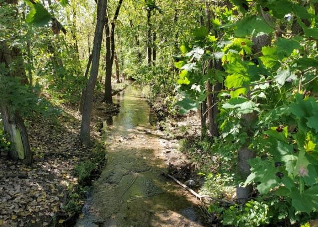 A no name creek that runs through Warren IL