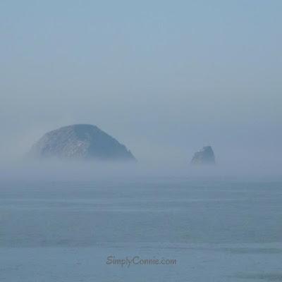 oregon coast sea stack in the fog