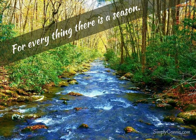 For every thing there is a season.