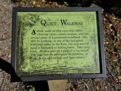 Quiet Walkway Smoky Mountains