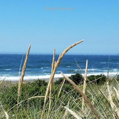 pacific ocean hwy 101 nomadic lifestyle