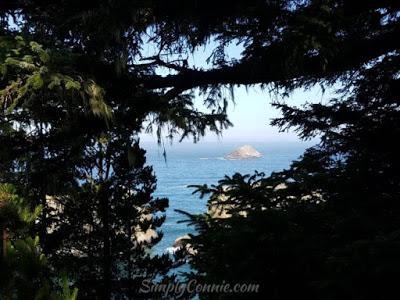 scenic vista arch rock