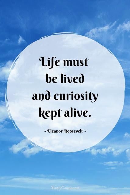 Life Must Be Lived - Curiosity Kept Alive