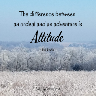 The difference between an ordeal and an adventure is attitude
