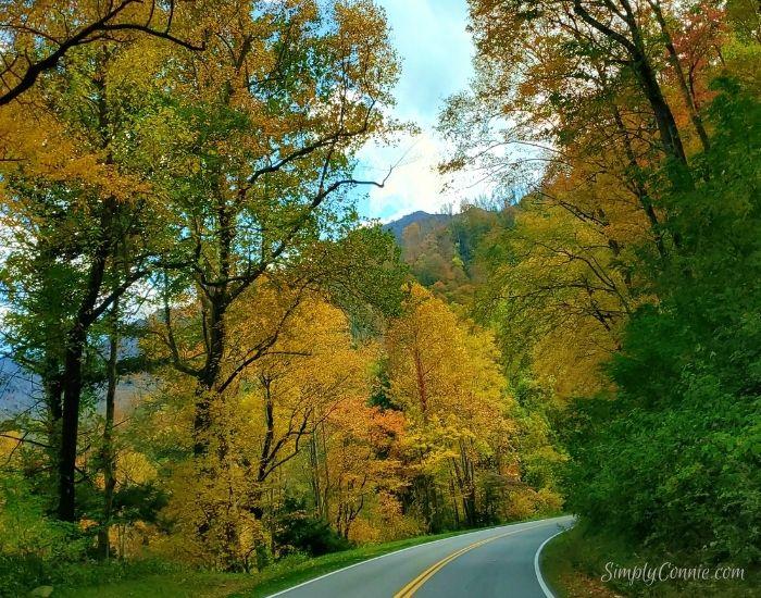 Smoky Mountain National Park TN NC