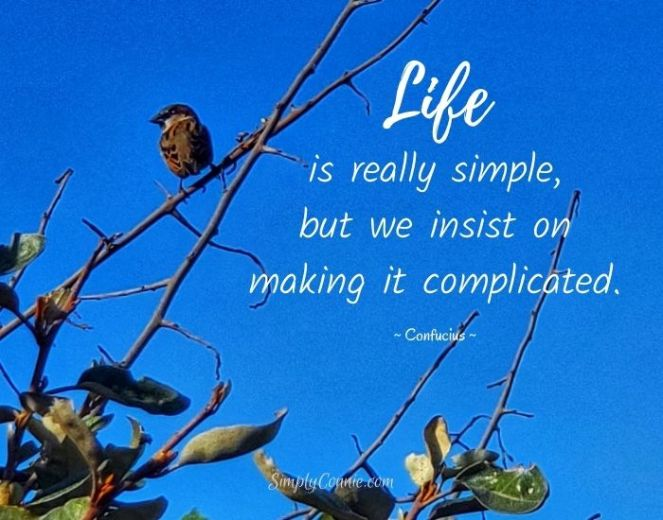 Life is really simple but we insist on making it complicated. Confucious.