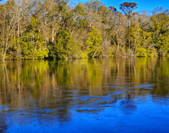 The Roanoke River in Moratoc Park Williamston NC