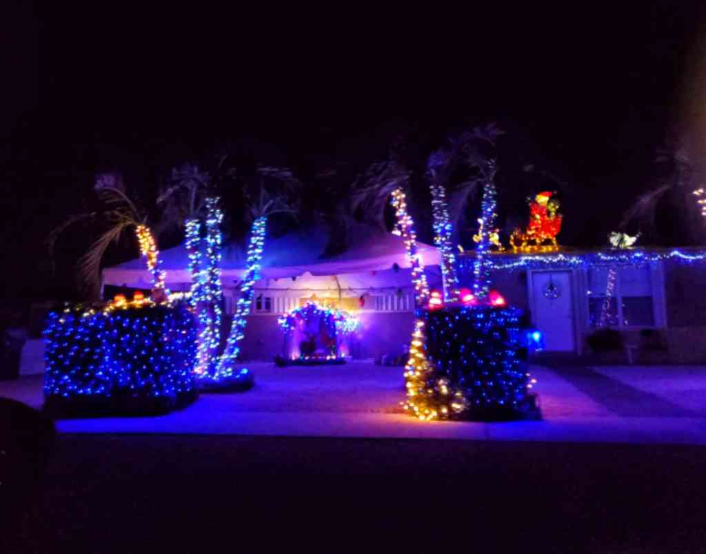 Christmas Lights - Cookie's Final Resting Place - Homestead FL