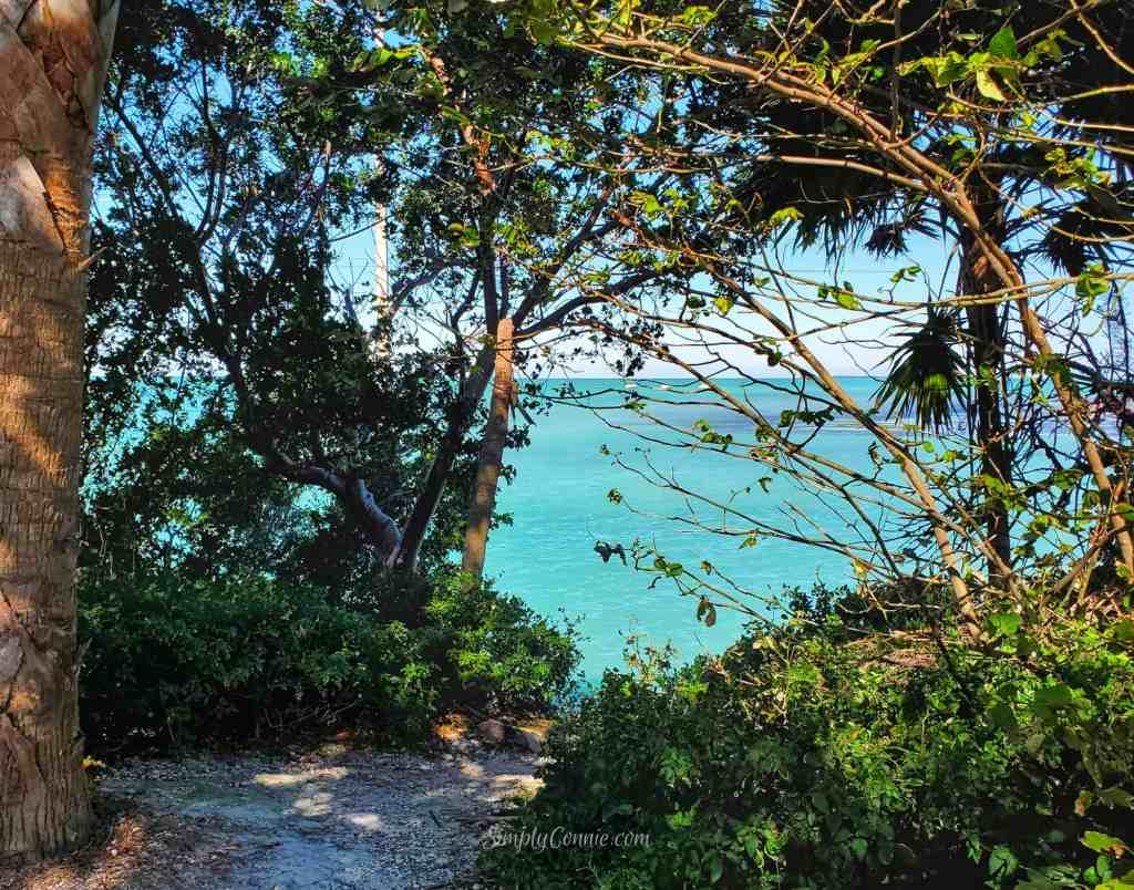 Gulf of Mexico - Islamorada FL