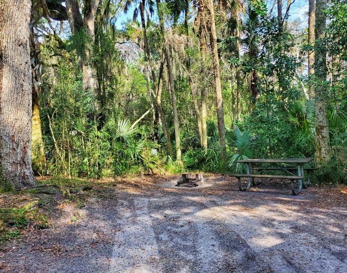 Florida Van life adventures